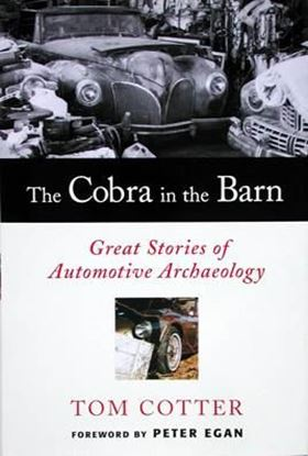 Immagine di THE COBRA IN THE BARN GREAT STORIES OF AUTOMOTIVE ARCHAEOLOGY