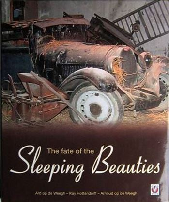 Immagine di THE FATE OF THE SLEEPING BEAUTIES