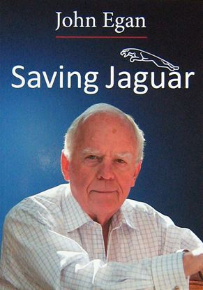 Picture of SAVING JAGUAR